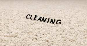 deodorize carpet